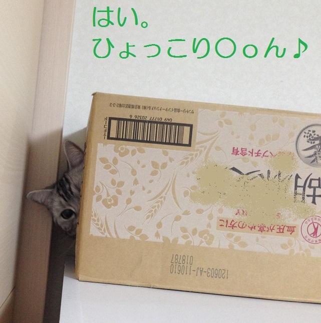 001IMG_0249.jpg