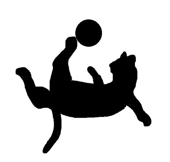 猫サッカー001012.jpg